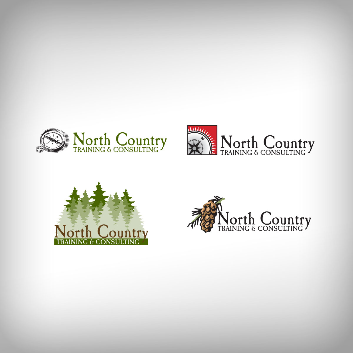 North Country Logo Ideas